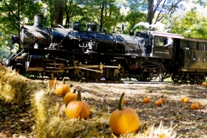 Great Pumpkin Train - Weekends, Sept. 29-Oct. 28